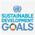 SDG-Poster-emblem-Sustainable-duurzaam_LOGO